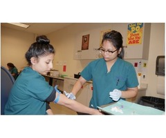 Phlebotomy Technician Program