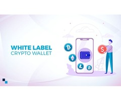 Safe and secure white label crypto wallet: Saves time and cost