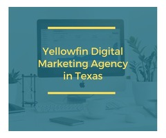 Yellowfin Digital Marketing Agency in Texas