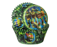 Wilton Teenage Mutant Ninja Turtle