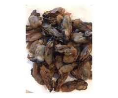 Make an order for dried oysters online to us