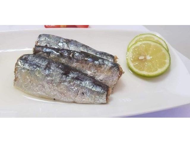 Moroccan sardines company   free-classifieds-usa.com