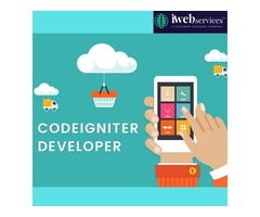 Hire Best Codeigniter Developer - iWebServices