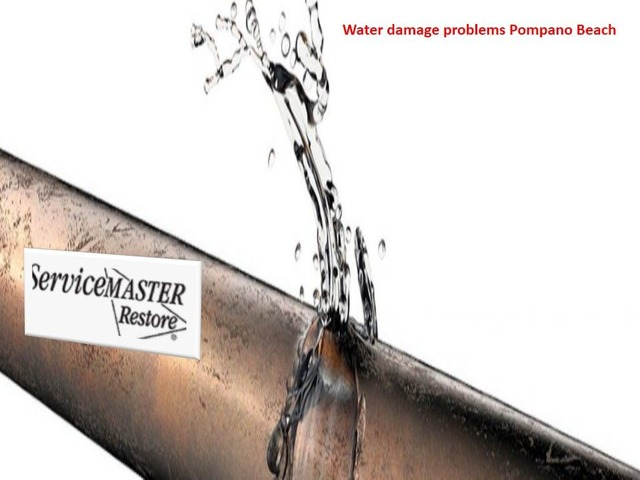 Which is the Water Damage Problems Solution Company | free-classifieds-usa.com