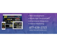 Why You Should Hire a Professional Web Development Company?