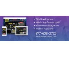 Why You Should Hire a Professional Web Development Company? | free-classifieds-usa.com