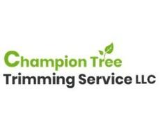 Tree Service Kalispell MT