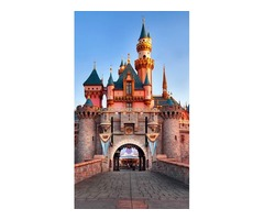 Disneyland Private tour