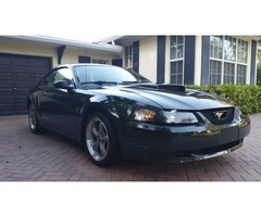 2001 Ford Mustang GT, Bullitt84