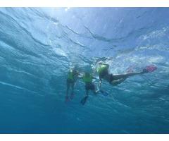 Snorkeling Turks and Caicos