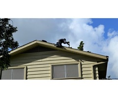 Professional Roofing Repair Treasure Coast