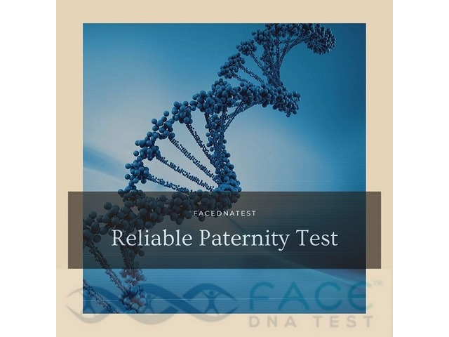 Reliable paternity test | free-classifieds-usa.com