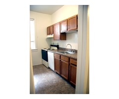 Baltimore's Bolton Hill Large 2BR, Pet Friendly, Parking Included | free-classifieds-usa.com