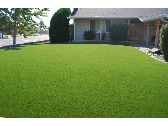 Artificial Turf for Dogs - Smart Grass USA | free-classifieds-usa.com