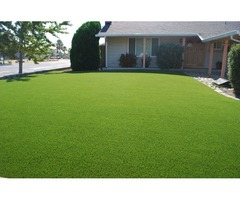 Artificial Turf for Dogs - Smart Grass USA