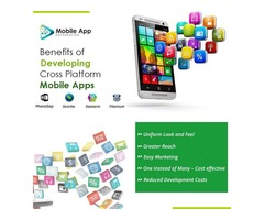 Mobile App Development in united states