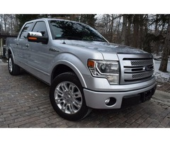 2013 Ford F-150 PLATINUM-EDITION1