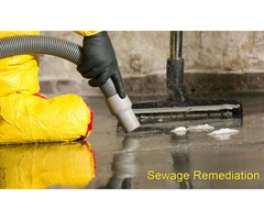 5 Steps To Deal With Sewage Clean Up