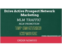 I will drive #prospect #network marketing #MLM promotion, #mlm traffic