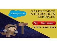 Salesforce Integration Services for Large and Small Organizations