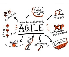 Agile project management training near me