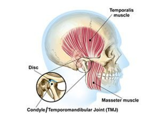 Hire The Services of TMJ Temporomandibular Joint Disorder near Gaithersburg MD  | free-classifieds-usa.com
