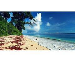 Andaman and Nicobar Islands Tour Information