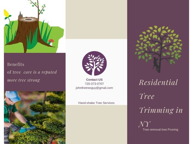 Residential Tree Trimming in Colorado | free-classifieds-usa.com