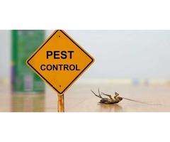 Best Pest Control Birmingham AL