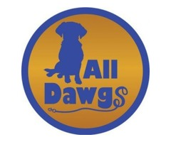Dog Obedience Training Services in Albany NY