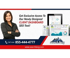 Seattle SEO Services | Professional SEO Consultant | Hire Seattle SEO Company - Search Berg