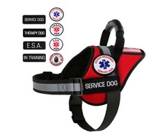 Shop Now for Service Dog Vest Equipment | free-classifieds-usa.com