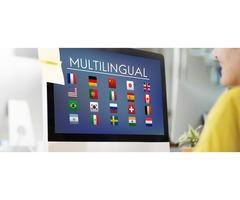 Get Your Multisite Website Developed at IDS Logic