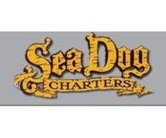 Sea Dog Fishing Charters