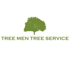 Why Hire Professional Tree Service?