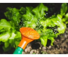 Save On Garden Tools With Mowers Online Coupon Code