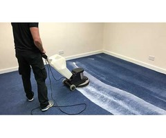 How Can I Choose The Best Carpet Cleaning Near Me?