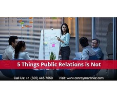 Public Relation Professionals and Public Relations Firms