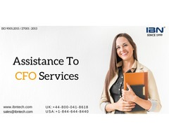 IBN Technologies gives Assistance to CFO Services in USA