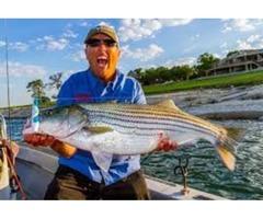 Striper Fishing Guides Lake Texoma