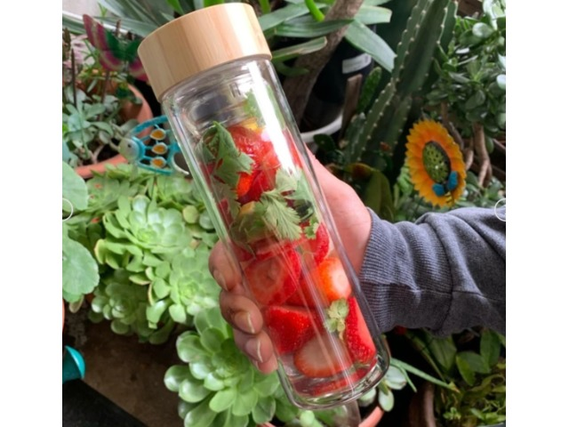 Fruit and Glass Infuser Water Bottle | free-classifieds-usa.com