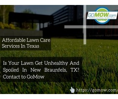 Is your lawn get unhealthy and spoiled in New Braunfels, TX? Contact to GoMow