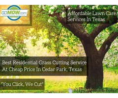 Best residential grass cutting service at cheap price in Cedar Park, Texas