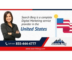 Local SEO Services in  Milwaukee | Expert SEO Consultant |  Milwaukee SEO Company - Search Berg