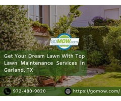 Get Your Dream Lawn With Top Lawn Maintenance Services In Garland, TX