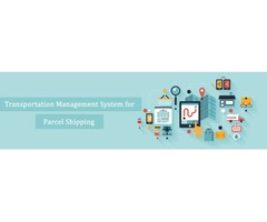 SAP Transportation Management System Streamline Business Process