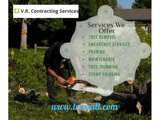 Tree Removal In Loganville | V.R. Contracting Services | free-classifieds-usa.com