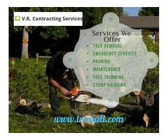 Tree Removal In Loganville | V.R. Contracting Services