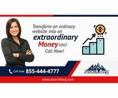 Seattle SEO Services | Professional SEO Consultant | Hire Seattle SEO Company - Search Berg