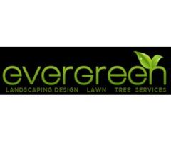 Irrigation Service Orlando | free-classifieds-usa.com